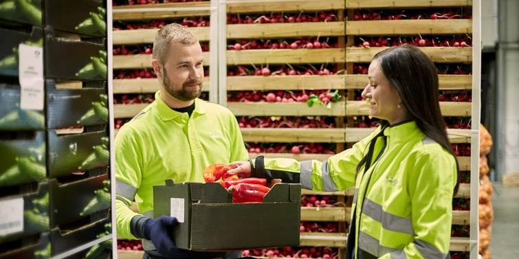 kontrola kvality zeleniny v sklade
